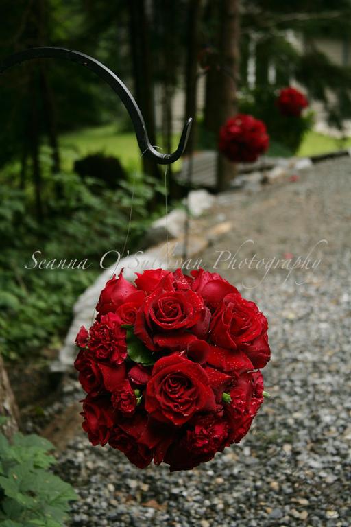 Flowers by Linda Carroll