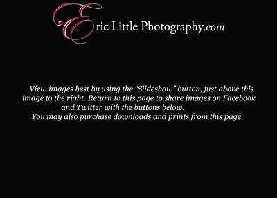 image slideshow view copy