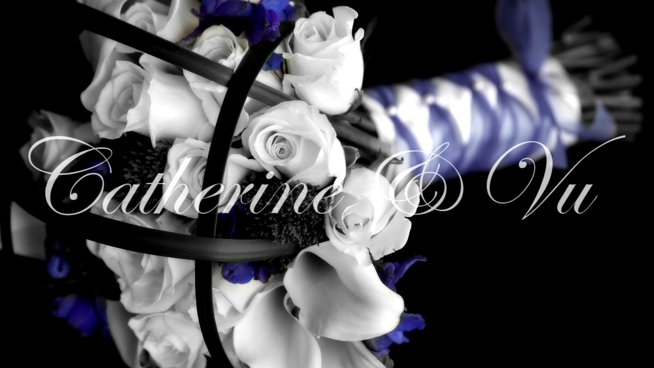 """Something That We Do - Our second official wedding video, same as the first, but featuring """"Something That We Do"""" by Clint Black, Catherine's favorite song"""