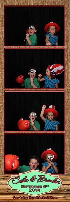 Cecile and Brandon Lanham Wedding