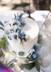 Alexandria Vail Photography Victorian Gardens Wedding Skye   Joel 020