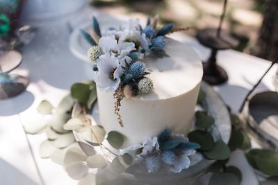 Alexandria Vail Photography Victorian Gardens Wedding Skye   Joel 019