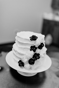 01976©ADHPhotography2020--ChanceKellyHayden--Wedding--AUGUST1bw