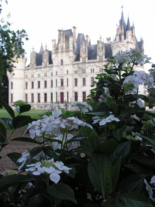 chateau 125