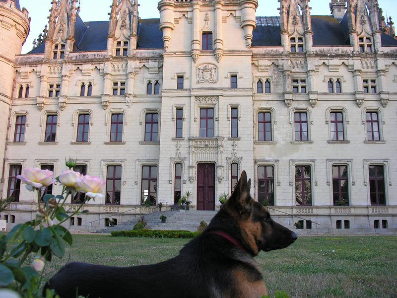 chateau 329
