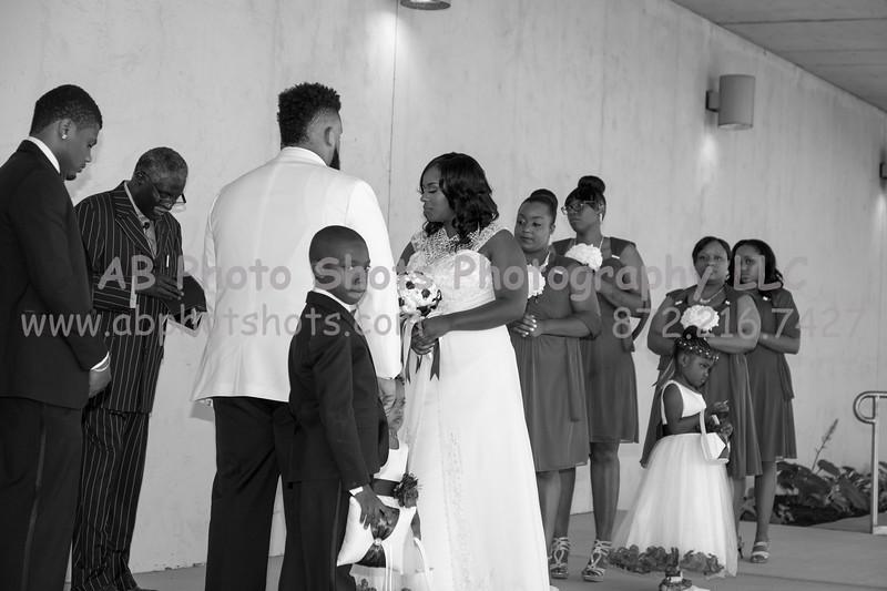 Wedding (154 of 631)