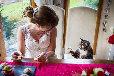 Chris-Diane-006-millbrook-estate-wedding-photographer-rebecca-roundhill