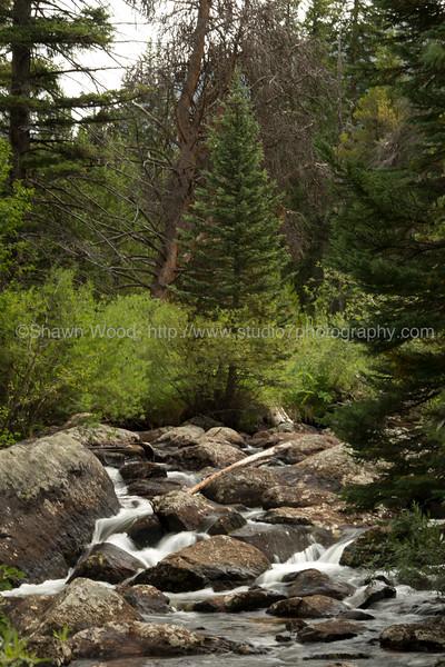 Colorado_14_0217