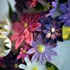 Christin_Wedding_20090725_236