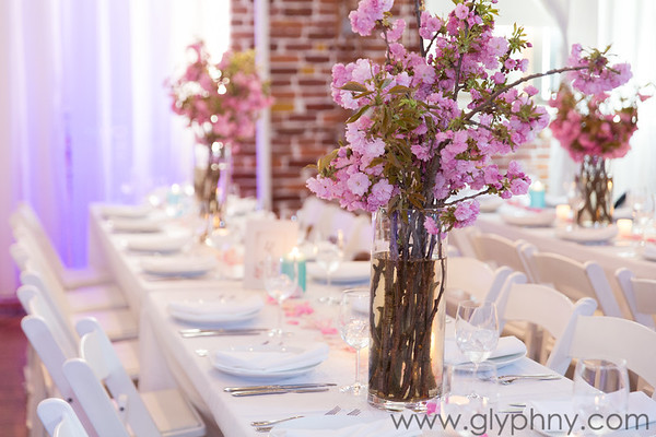 Christine & Omri's Wedding