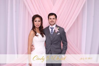 Cindy & David Wedding - July 29, 2017