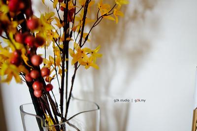 G3K_7605