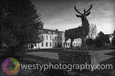 Gosfield_BW_HDR