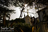 palacete de cazulas otivar granada_jjweddingphotography_com