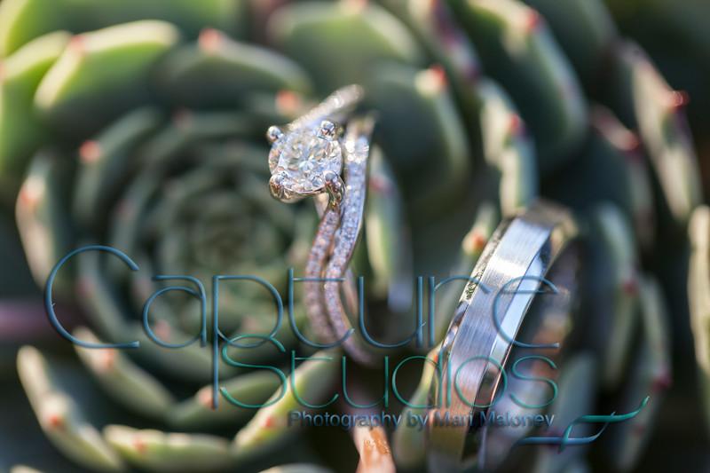 Rings_8547