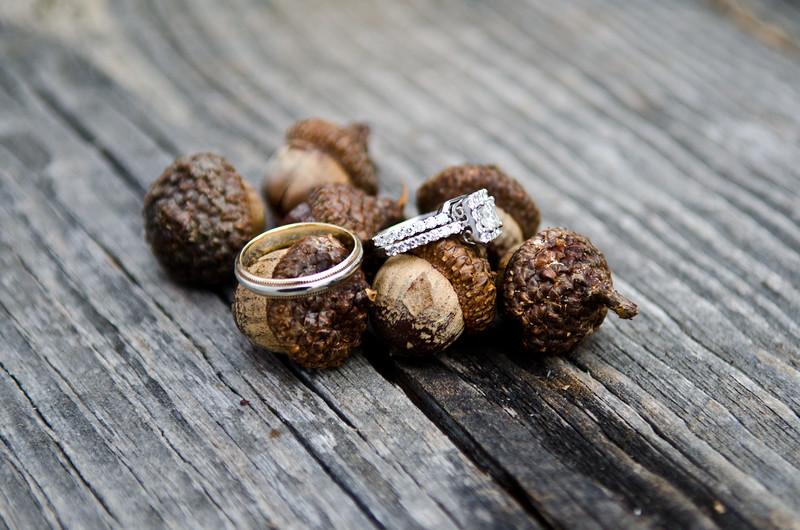 Hart Frost Wedding 3 3 12-605