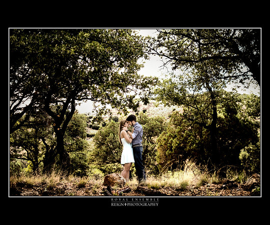 Love in the Oaks
