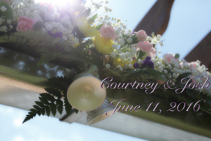 josh courtney wedding text7983