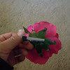 Picture of the clip<br /> <br /> Bright fuschia rose clip, one available, $3