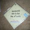 "Diamond laminate plastic sign (like the baby on board signs) w/suction, ""Newlyweds still on the sea of love"".  They are 5""x5"". $.50 each, 2 available"