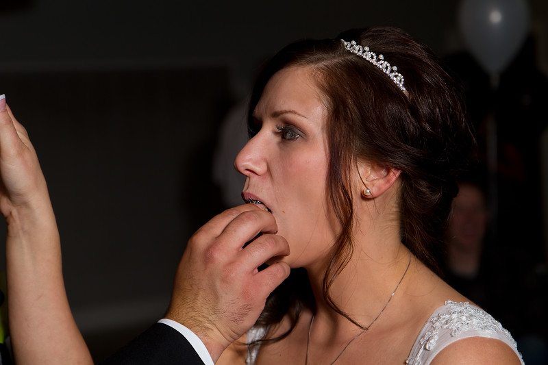 CristySean-Wedding-FR-7961