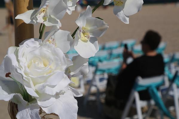 Crystal & Terrance Wedding