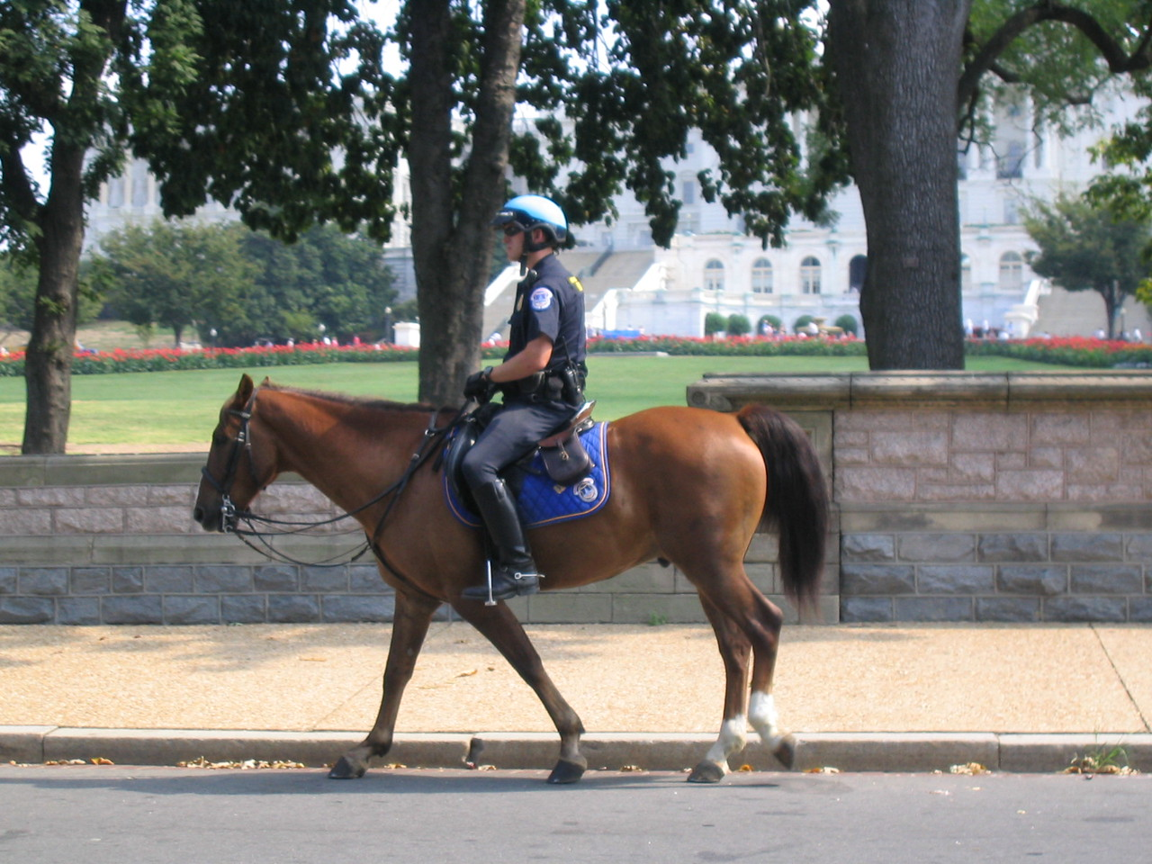 Cop in front of capitol