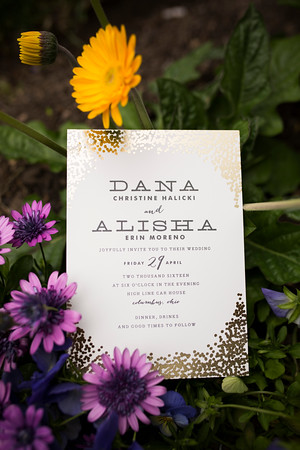 danaalisha_wedding0023