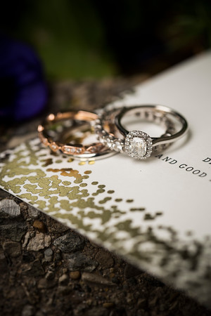 danaalisha_wedding0034