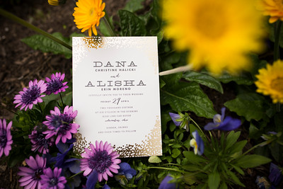 danaalisha_wedding0022