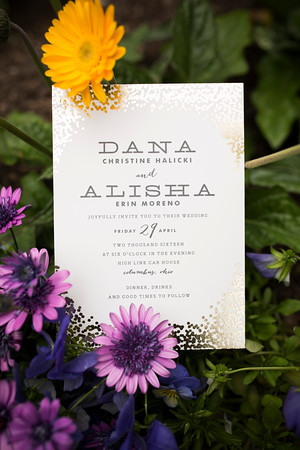 danaalisha_wedding0021