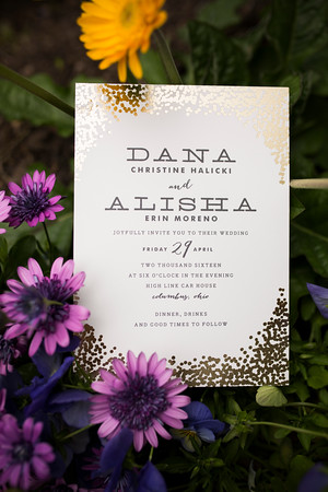 danaalisha_wedding0024