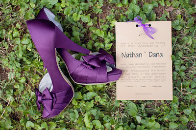 Dana+Nathan's Wedding