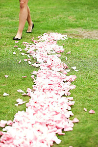 3919 petals