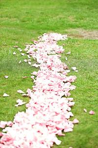 3919 petals no legs