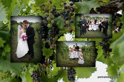 Dani & Alex wedding-originals16