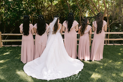 Bridal Party 116