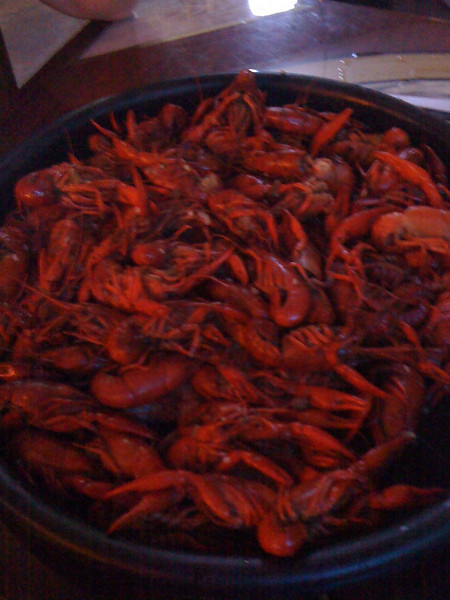 Dave and Andrea's Wedding, Sunday April 6th 2008, New Orleans, LA: Crawfish