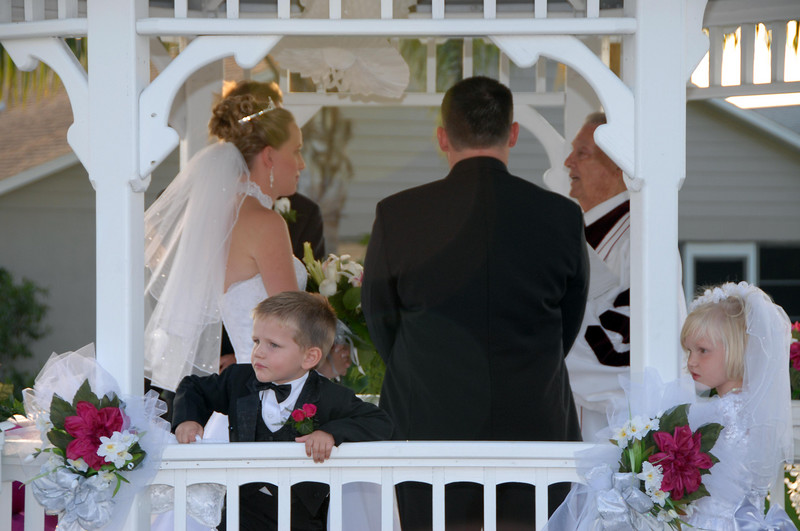 I think the ring bearer was a little distracted.