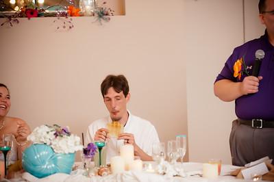 Dave and Terri Wedding-0826