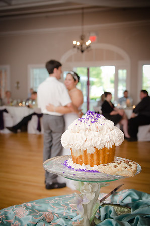 Dave and Terri Wedding-0783