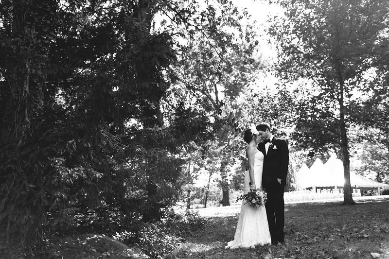 DEHMER WEDDING - 0000339