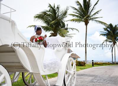 Destination Wedding- Donna & Donovan