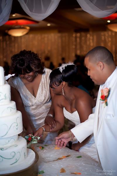 Devin-Wedding10242009-0908
