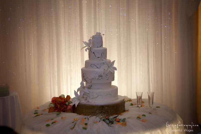 Devin-Wedding10242009-0740