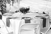 Diane Edlund and Tim Kane Wedding, Paoli, Pennsylvania