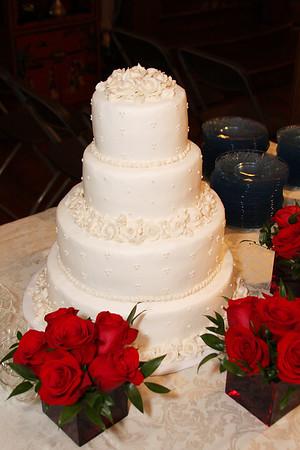 Dianne & Aaron's Wedding Reception 3/28/09