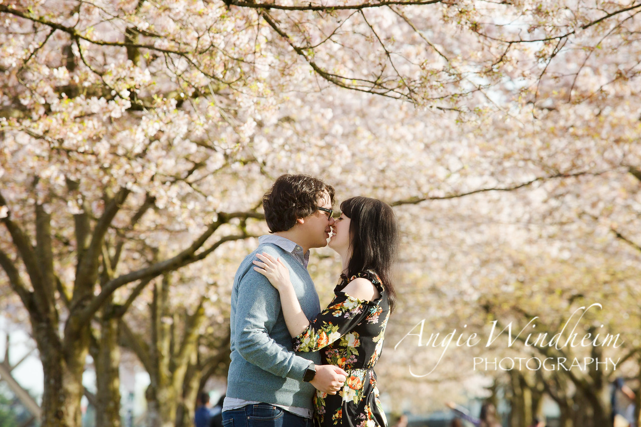 Spring cherry blossoms and love at Japanese American Historical Plaza in Portland, Oregon