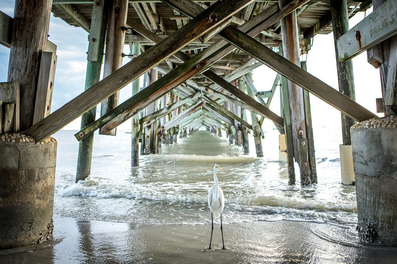 20130928 Jennifer Merriam and Durrel Brown - Wedding - Reddington Beach 0008