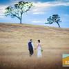 Elise+Nic ~ Wedding _524